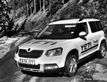 Auto – Skoda Yeti