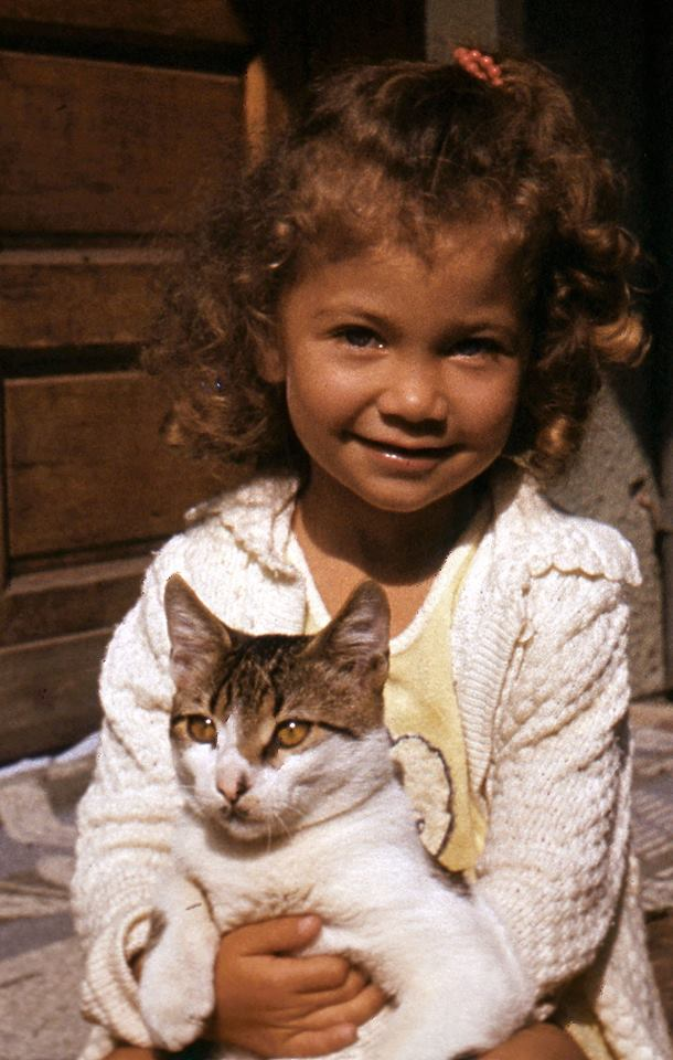 eu-si-pisicile-orfane