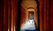 Bologna, orașul care poate fi vizitat în orice anotimp. Ghid complet – transport, cazare, obiective turistice