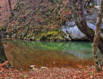 Evadare în weekend: Cheile Vârghișului și Castle Hotel Daniel din Baraolt
